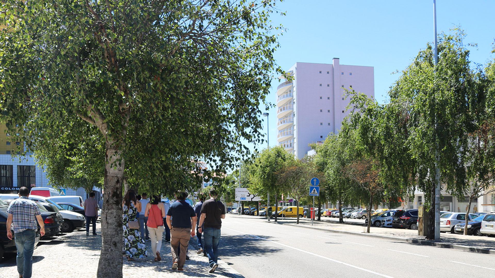 Glicinias-glória-vera-cruz-Aveiro-ville-real-estate-imobiliaria-comprar-arrendar-vender-moradia-apartamento-casa-t0-t1-t2-t3-t4-1