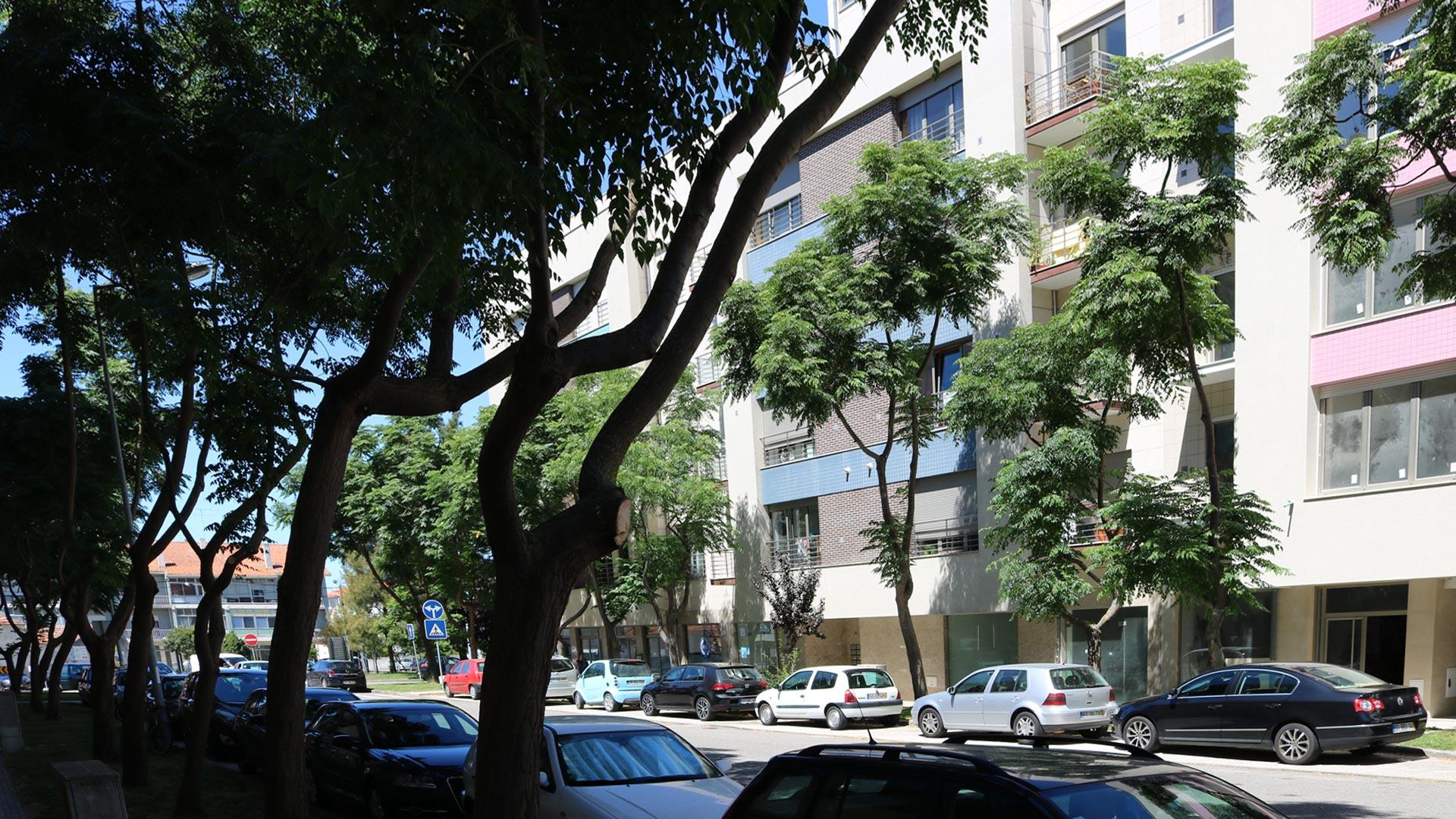 Glicinias-glória-vera-cruz-Aveiro-ville-real-estate-imobiliaria-comprar-arrendar-vender-moradia-apartamento-casa-t0-t1-t2-t3-t4-8