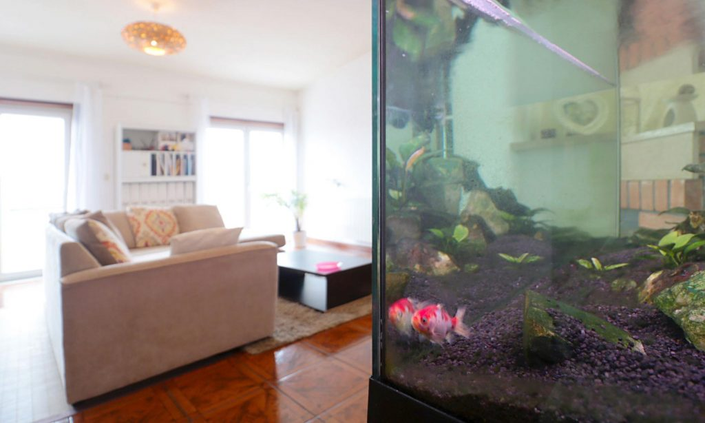 Apartamento T2 Gafanha da Nazaré Aveiro para venda