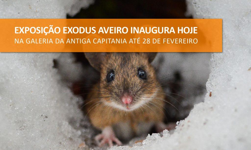 National Geographic Exodus Aveiro Fest