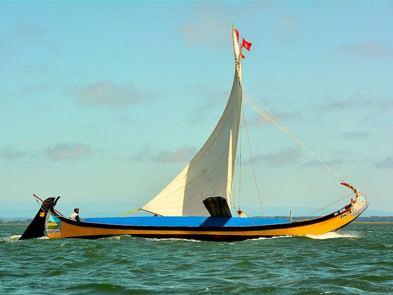 moliceiro gondola veneza de portugal